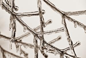 ice cristal