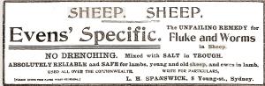 sheep remedy 1912