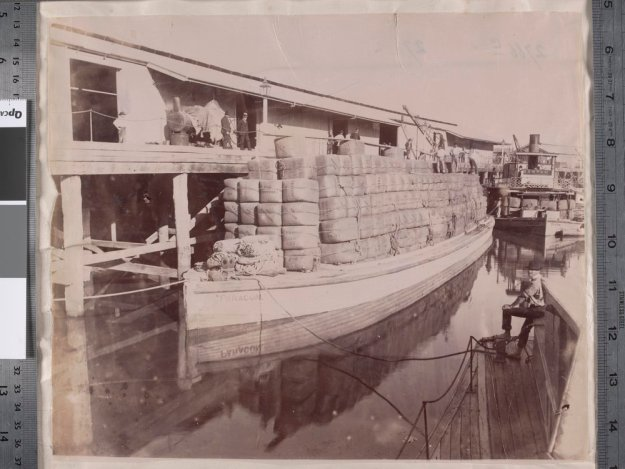 Wool barges on the Murray River]
