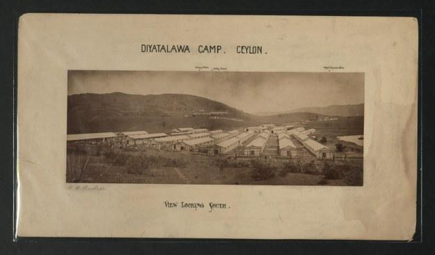 Diyatalawa camp. Ceylon