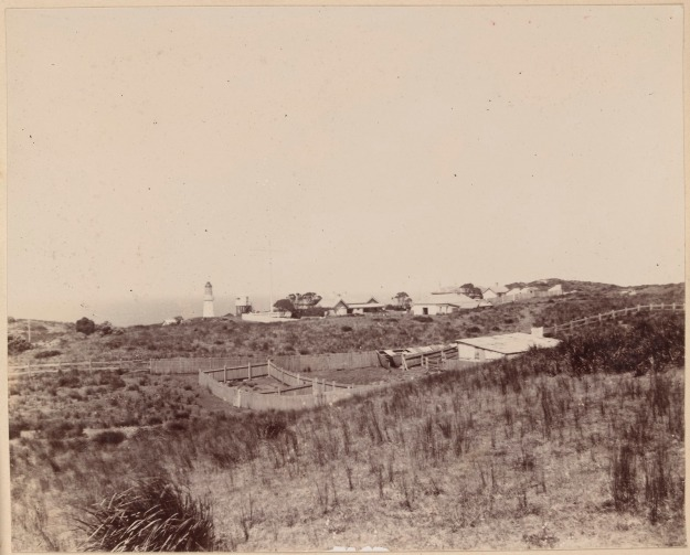 Cape Otway with lighthouse 1901