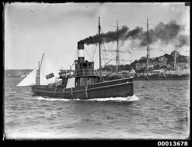 tug Gamecock, Sydney 1901