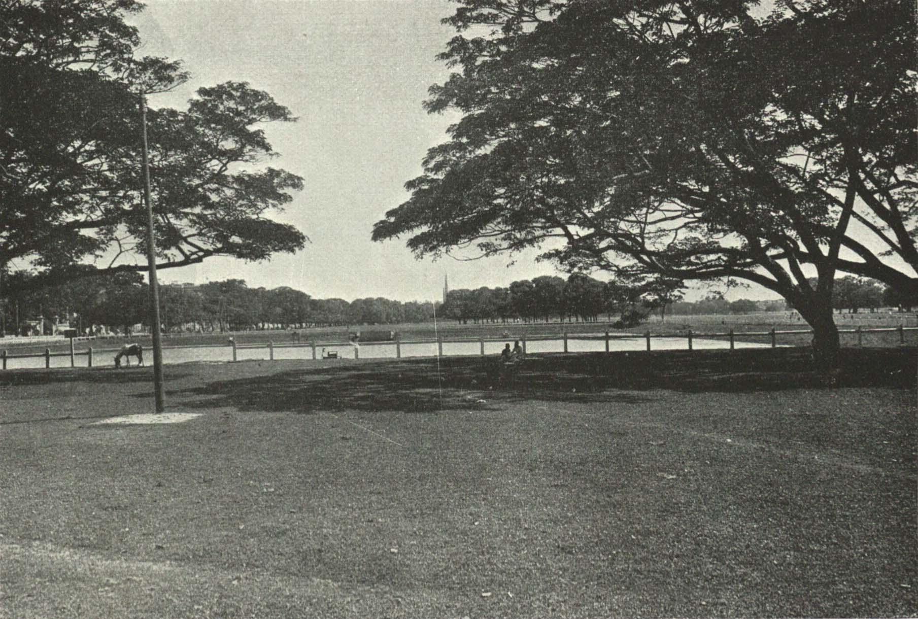 Maidan, Esplanade, Parc, Calcutta 1915