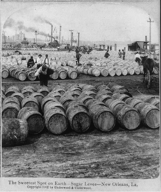 Sugar Levee, New Orleans, 1902