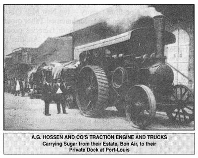 Sugar cane history